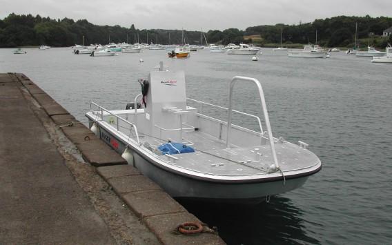 Buggy 545