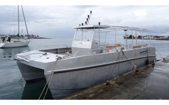 DIVE CATAMARAN SQUID 900