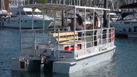 Catamaran électrique