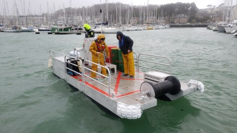 Barge RLX